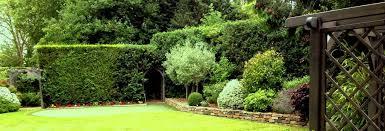 exeter landscapes gardening garden
