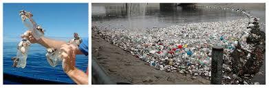 Переработка пластиковых отходов cleandex plasticwaste jpg