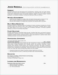 Customer Service Resume Summary Delectable Resumes For Customer Service Representative Roddyschrock Resume
