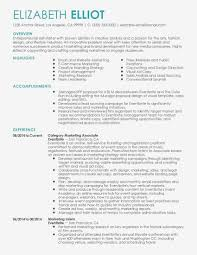Visual Resume Template Examples Resume For Accountant Job ëå