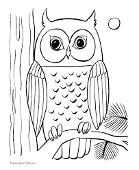 coloring pages draw an owl