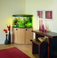 Decorative Fish Tank Ideas Things To Consider  MidCityEastFish Tank Room Design
