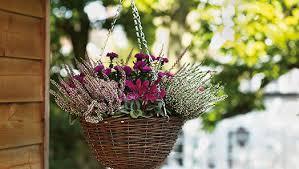 plant care supplies soil accessories