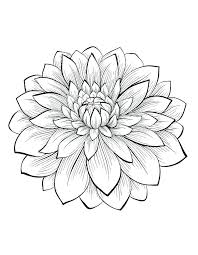 Flower Coloring Pages Online Adult Coloring Pages Online Free Adult