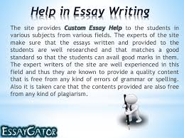 The Essay Help