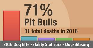 12 Year Us Dog Bite Fatality Chart Pit Bull Attacks Vs Other Breeds Statistics