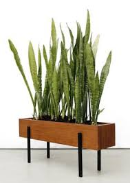 office planter. easy to make something like this good wood offcuts teak enameled metal planter office r