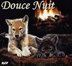 """Résultat de recherche d'images pour """"GIFS bonne nuit avec les loups"""""""