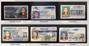 U License Certificate Florida Birth Passport Driver 's s And Ssn gg0E16