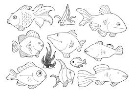 Small Picture Coloring Pages Sea Creatures For Bebo Pandco