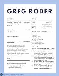 Best Resume Format 2017 650841 Template Best Word Resume