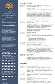 senior online product manager ecaremcare consumer residential resume samples junior product manager resume