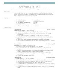Sales Objectives For Resumes Thrifdecorblog Com