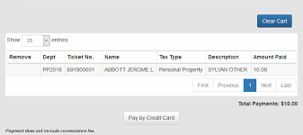 Credit card property tax payments using option pay. Pay Personal Property Tax