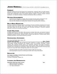 Resume Professional Summary Examples Cool Resume Career Summary Beautiful Professional Summary For A Resume