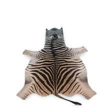 zebra skin rug cape town vintage