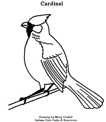 Artistic or educative coloring pages ? Dnr Coloring Pages Animals