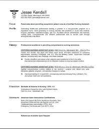 Curatorial Assistant Cover Letter Sample Curator Nursing Nurses Aide