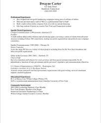 Non Profit Marketer Free Resume Samples Blue Sky Resumes