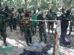 wonder about the ADF in DRC ...