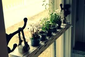 kitchen window hanging herb garden ideas window herb garden your kitchen
