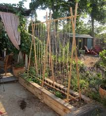 Small Picture Fresh Easy Garden Trellis Ideas 7550