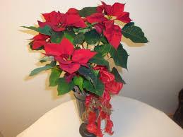 Deko Ideen Für Weihnachten Dekoration Mit Einem