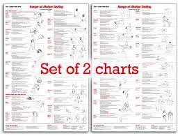 Pressure Point Charts Free Expository Trigger Points Chart Free Download Reflexology