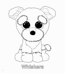 Beanie Boo Coloring Pages Lovely Swoops The Owl Ty Beanie Boo Ty