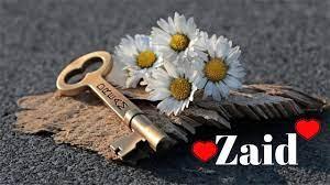 Zaid Name Whatsapp Dp - 1280x720 ...