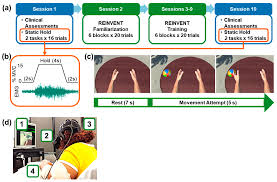 Sensors | Free Full-Text | A Virtual Reality Muscle–Computer Interface for  Neurorehabilitation in Chronic Stroke: A Pilot Study
