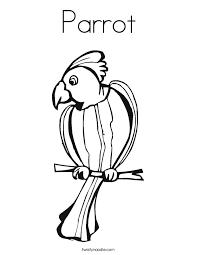 parrot_coloring_page?ctok=20120220223053 parrot coloring page twisty noodle on parrot outline template