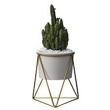 Planter Pots IndoorYu0026MTM 6 Inch Modern Garden White Ceramic Round Bowl  With Metal Air Plant Stand For Succulent Cactus White  Gold Mid Century Modern Metal Plant Stand M2