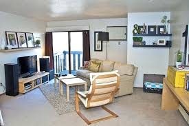 cheap apartment decor websites. College Apartment Decor Cheap Design Where To Buy Websites Male . P