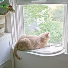 custom diy cat perch via year of serendipity catify window cat hammock
