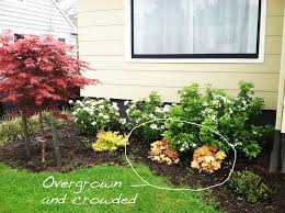 low maintenance plants outdoor ontario designs