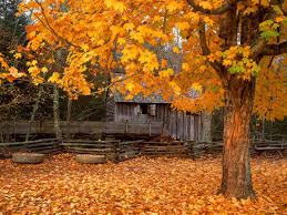 autumn mountains backgrounds.  Autumn Previous Autumn Wallpaper John Cable Mill Cades Cove Great Smoky Mountains  National Park Tennessee In Autumn Backgrounds