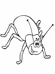 beetle insect coloring pages