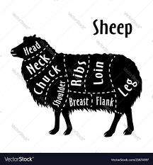 Cut Of Sheep Diagram For Butcher Sheep Cut