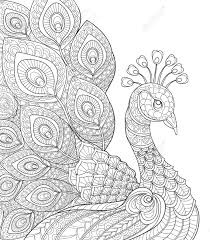 Peacock Adult Antistress Coloring Page Black And White Hand