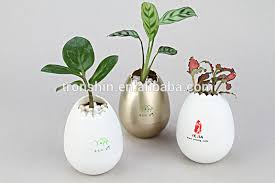 office flower pots. office desk flower potsegg potcute pots i