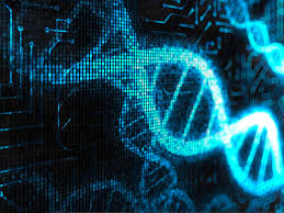 Дипломная работа Биоинженерия и биоинформатика ВКР  Выполним дипломную работу вкр по биоинженерии и биоинформатике