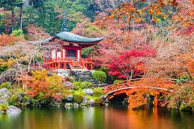 kyoto an an is full of fascinating culture and kyoto presents it in the prettiest package the city is full of stunning architecture