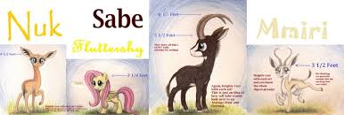 Animal Eye Size Chart 838860 Animal In Mlp Form Antelope Artist