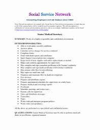 Waitress Description For Resume 100 Best Of Waitress Responsibilities Resume Samples Resume 39