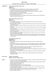 Business Consultant Job Description Resume IT Business Consultant Resume Samples Velvet Jobs 24