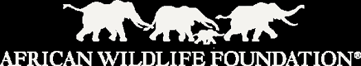 Image result for african wildlife foundation