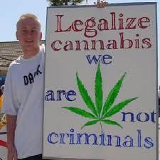 should marijuana be legalized essay medical marijuana should be legalized in all states essay