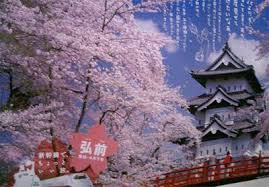 ancient chinese architecture worksheet. ancient castle in japan chinese architecture worksheet