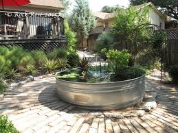 in the back garden a large stock tank takes center stage the trickle of water from a recirculating stand pipe filling the air with that magically soothing